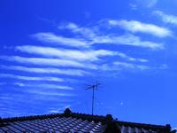 いわし雲1.jpg