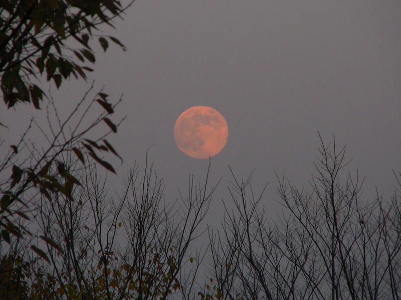 moon-4.jpg